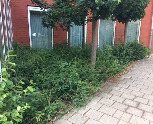 Bestrating groenperk bij Sportcity Leiden